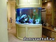 Советы о том,как выбрать аквариум