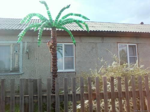 Пальма из пластиковых бутылок на даче - Советы - Фото - Дом советов