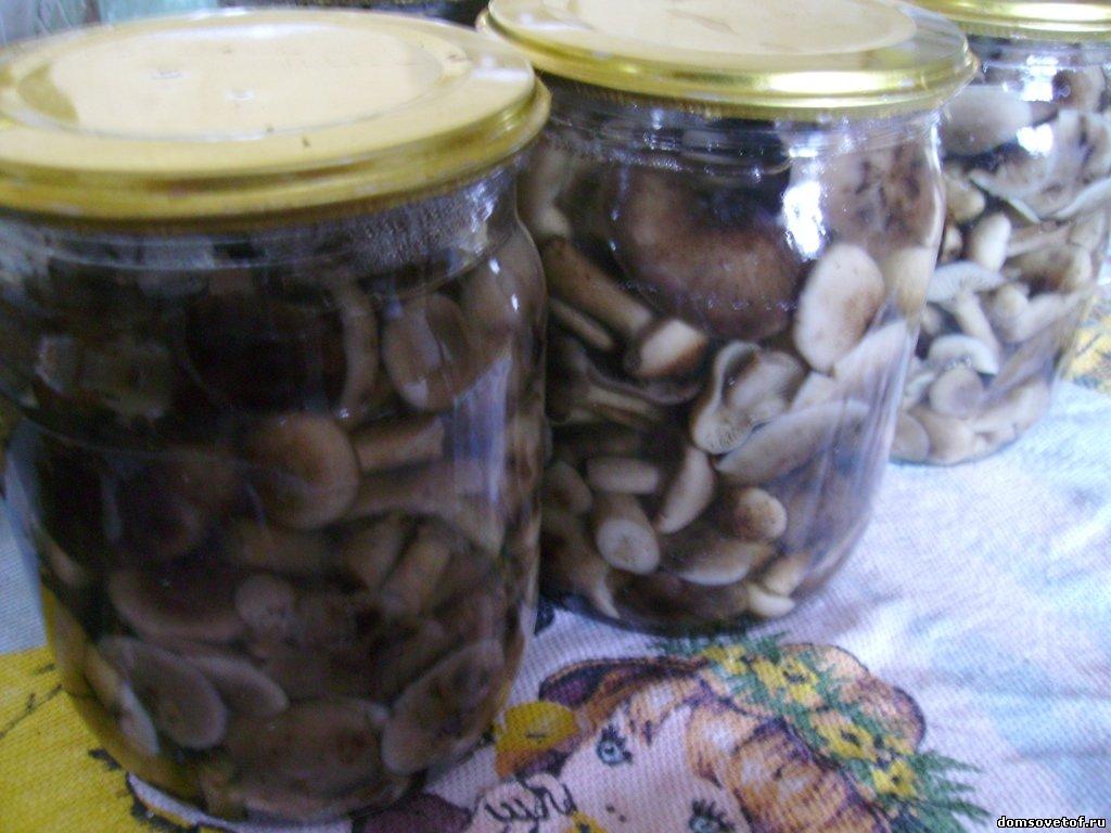 Больше рецептов маринования грибов. Опята по этому рецепту очень