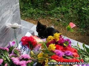 http://www.domsovetof.ru/_pu/16/41747580.jpg