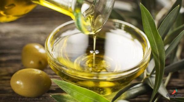 Оливковое масло как неотъемлемая составляющая повседневной жизни