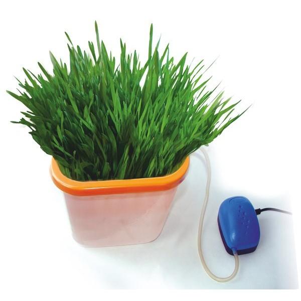 Полезный совет : Здоровья КЛАД - гидропонный проращиватель зерен, семян и орехов. Цены, отзывы, где купить
