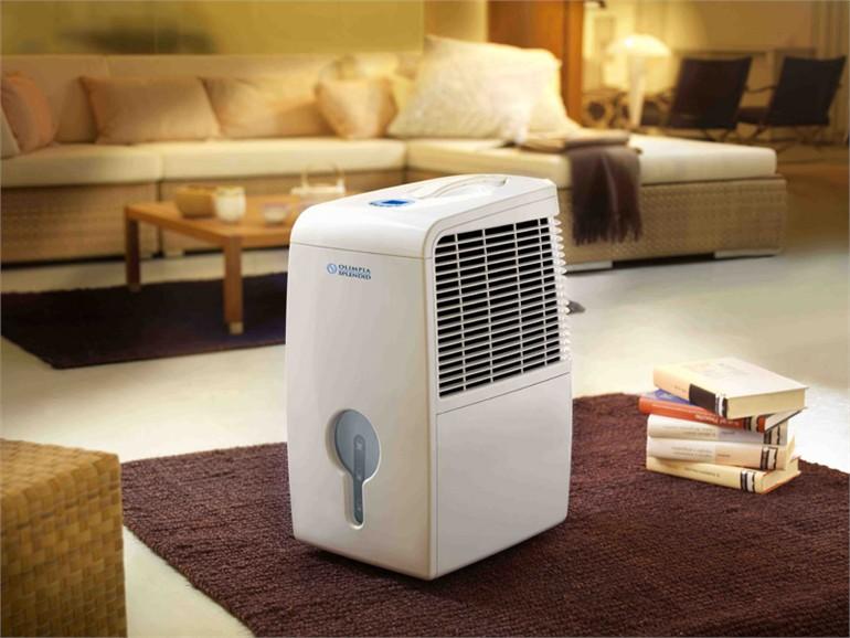 Полезный совет : Осушитель воздуха
