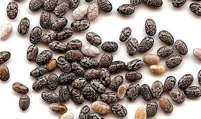 Полезный совет : Семена Чиа для похудения - продукт  с уникальными особенностями