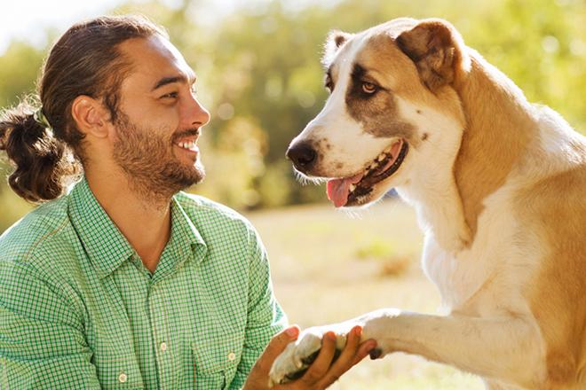общение с собакой и воспитание