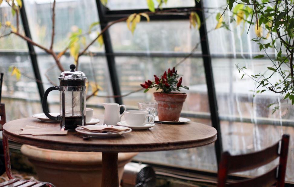 полезные советы по открытию собственного бизеса - кафе или ресторана